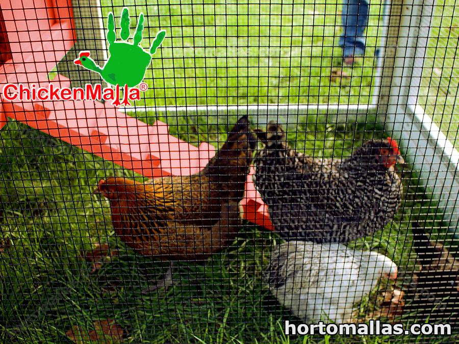 malla gallinera para granja